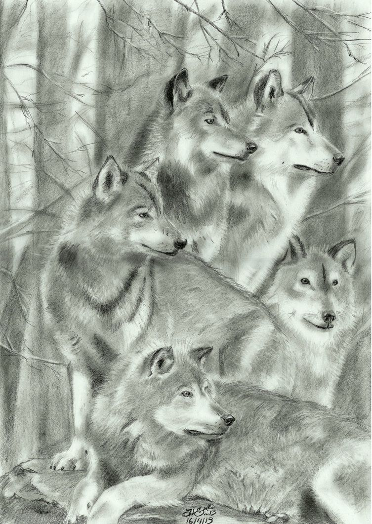 A Wolf Family Wolf Pack Tattoo Wolf Paw Print Wolf Tattoos
