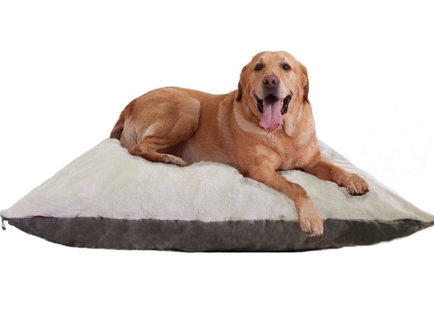 Ehomegoods 54x47 Xxxl Beige Color Jumbo Orthopedic Micro Cushion Memory Foam Pet Bed Pillow For Xlarge Dog With 2 External Memory Foam Pet Bed My Pet Dog Pets