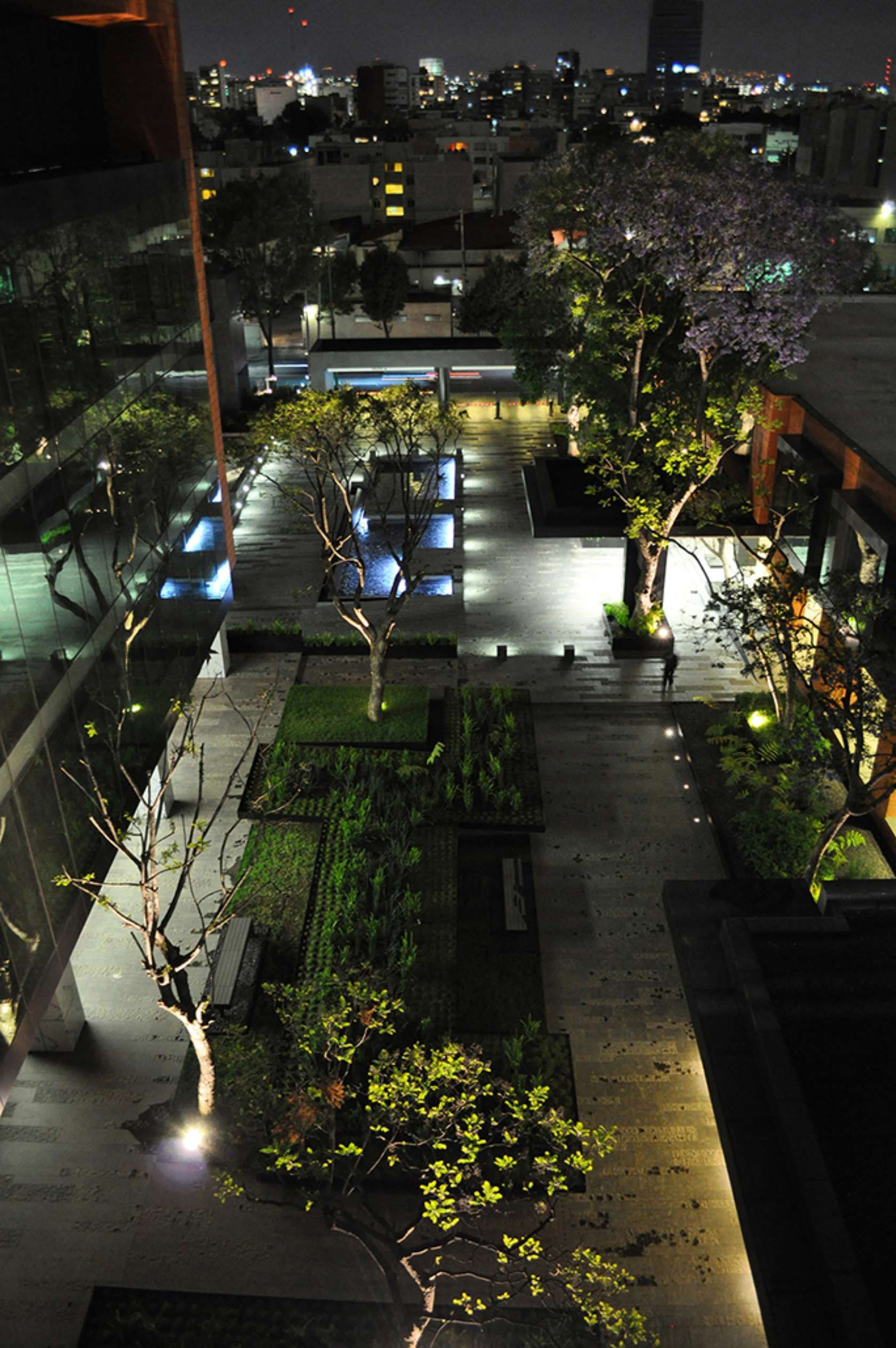 Garden landscape night  Coyoacán corporate campus  landscape architecture  Pinterest