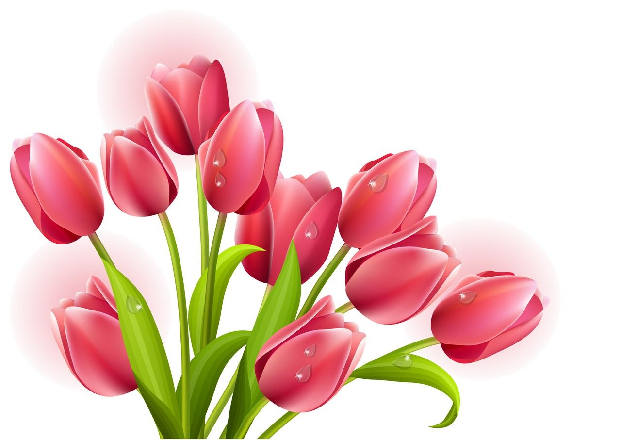 23++ Flower clipart free download vector information