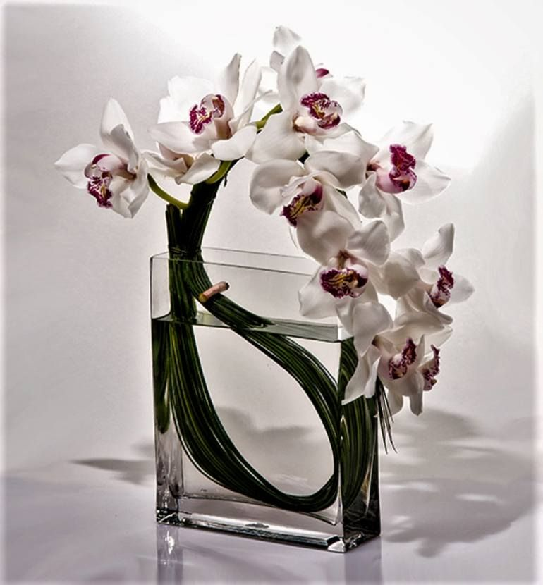 Floral Elements In Architectural Space Iii 5 Pc Set Of Limited Edition Of 200 Prints Photograph In 2020 Modern Flower Arrangements Flower Arrangements Simple Orchid Flower Arrangements