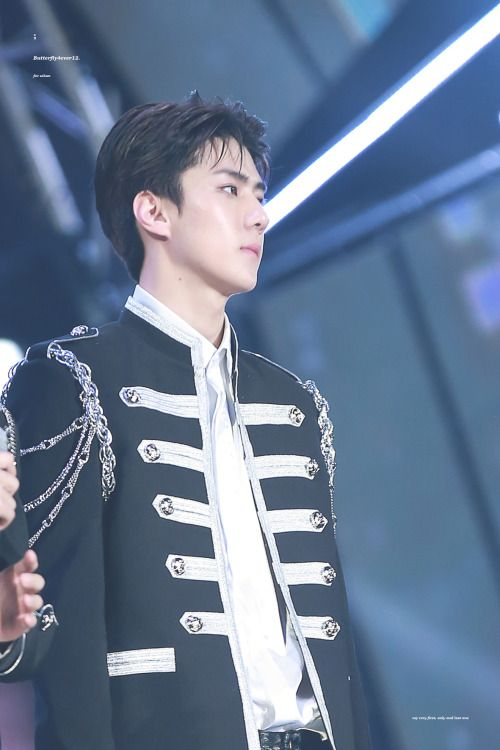 Sehun - 170114 31st Golden Disk Awards Credit: Butterfly4ever12. (제31회 골든디스크 어워즈)