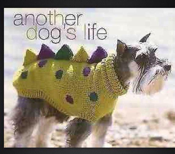 Dog Coat / Jumper Patons Knitting pattern Dogosaurus Rex 5 ...