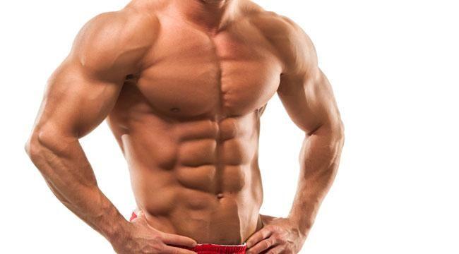 forskolin muscolo liscio