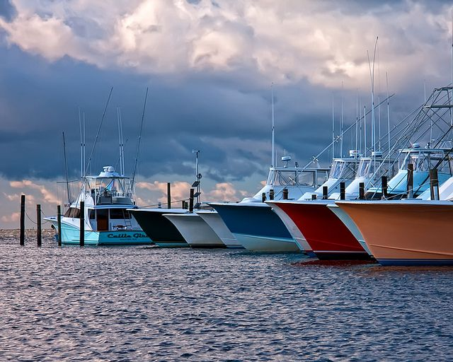 Fishing charter boats oregon inlet fishing center home for Oregon inlet fishing center