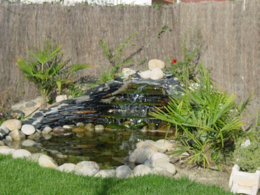 Ideas para estanques de jard n lily pond and gardens - Estanque de jardin ...