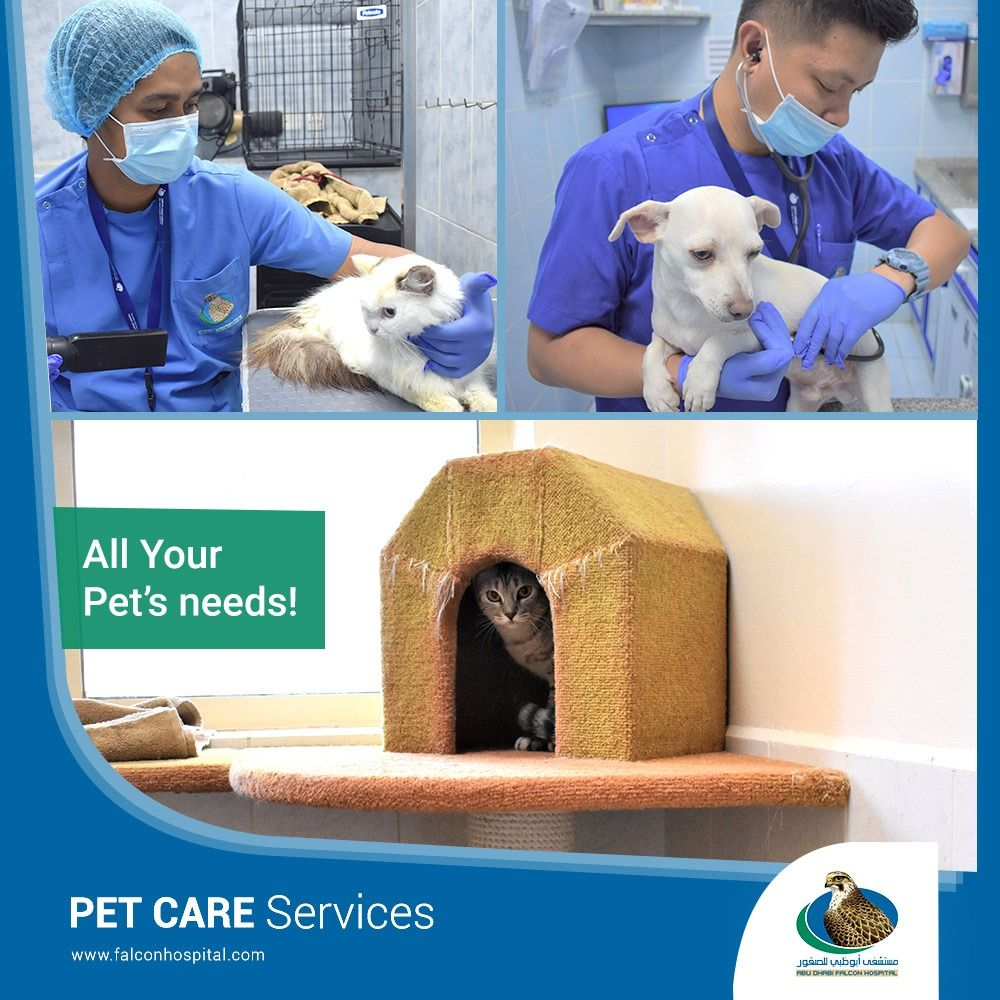 Give your pets all they need at the ADFH PCC, with well