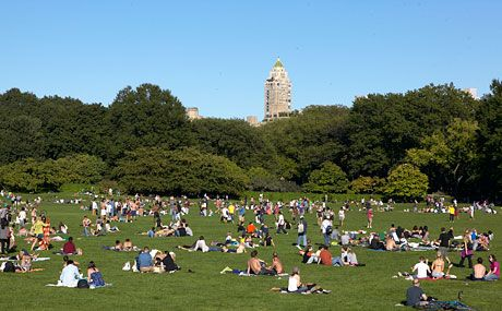 Best Things To Do In Central Park Travel Guide Activities And Events Central Park Park Travel