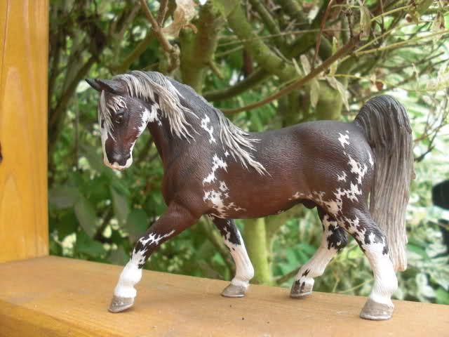 Pin Von Camille Mayer Auf Schleich Schleich Pferde Breyer Pferde Pferde