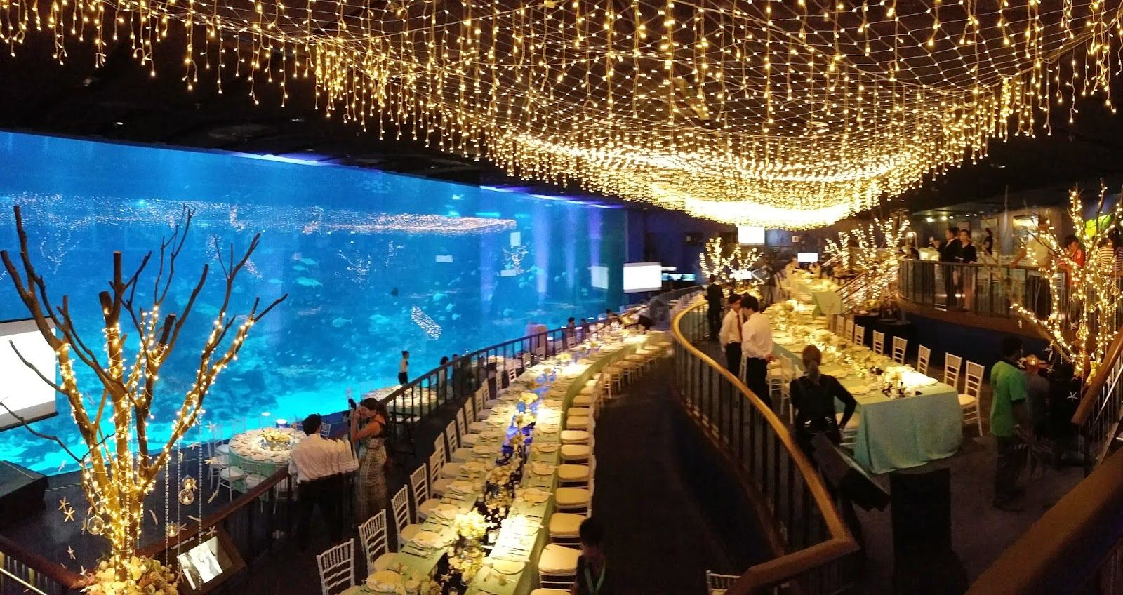 Why You Should Hold Your Wedding The Sea Aquarium In Singapore Sparkle Live Music