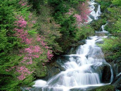 Nikkō Tochigi Waterfall Wallpaper Waterfall Waterfall Scenery
