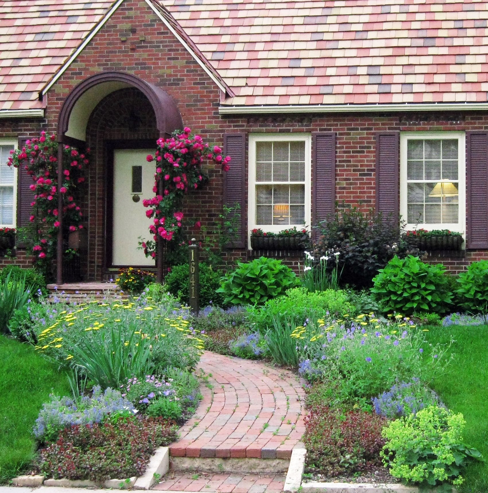 Front Yard Cottage Garden John Cabot Climbing Roses | Lori ... on Cottage Yard Ideas id=63984