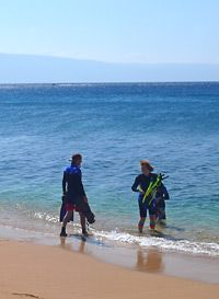 Learn To Read Ocean Snorkeling Conditions For Safety