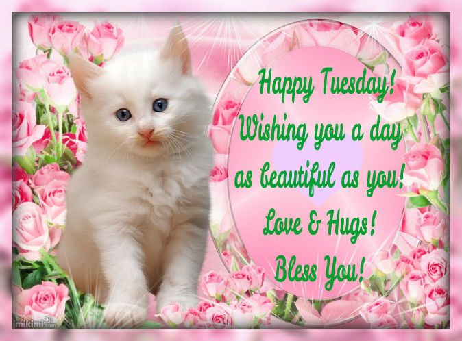 Happy Tuesday Days Of The Week Tuesday Happy Tuesday Tuesday Greeting  Tuesday Quote Tuesday Blessings Good