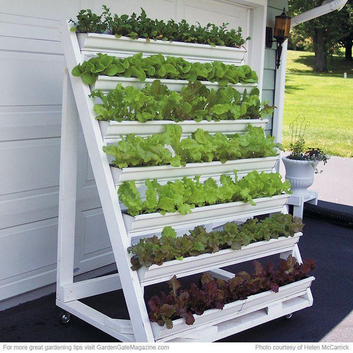 Holen Sie sich mit einem mobilen vertikalen Blumenkasten mehr von dem Salat, den Sie lieben.