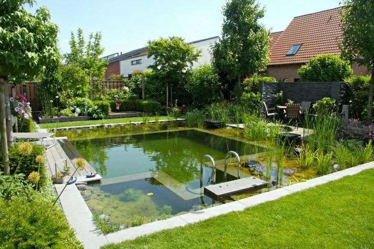 Bassin Auqatique : Plantes Du0027eau Pour Déco De Jardin