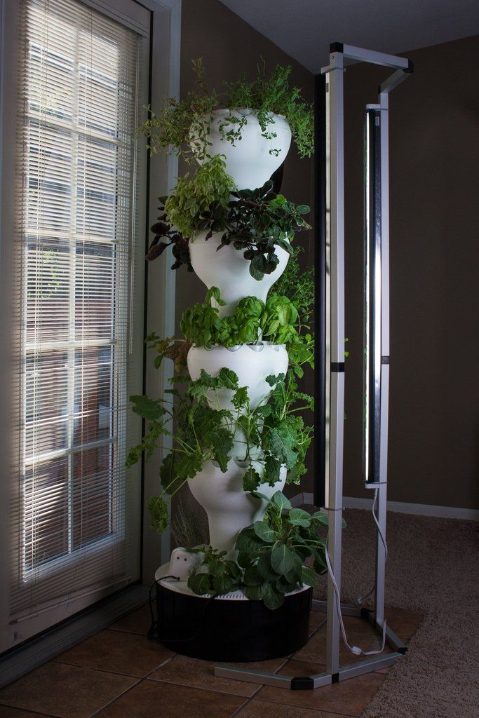 T5 Vertical Lighting System in 2020 Aquaponics