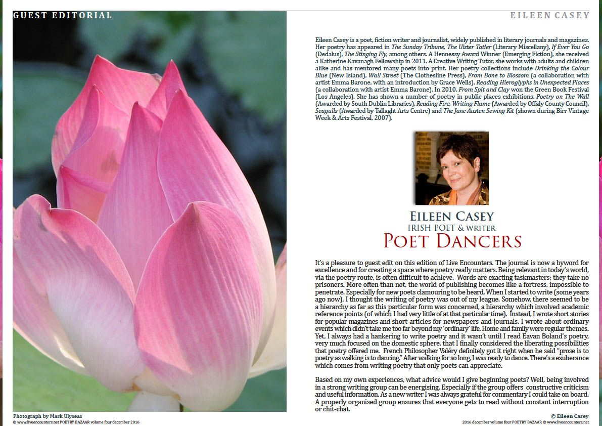 Article in pdf download here guest editorial poet