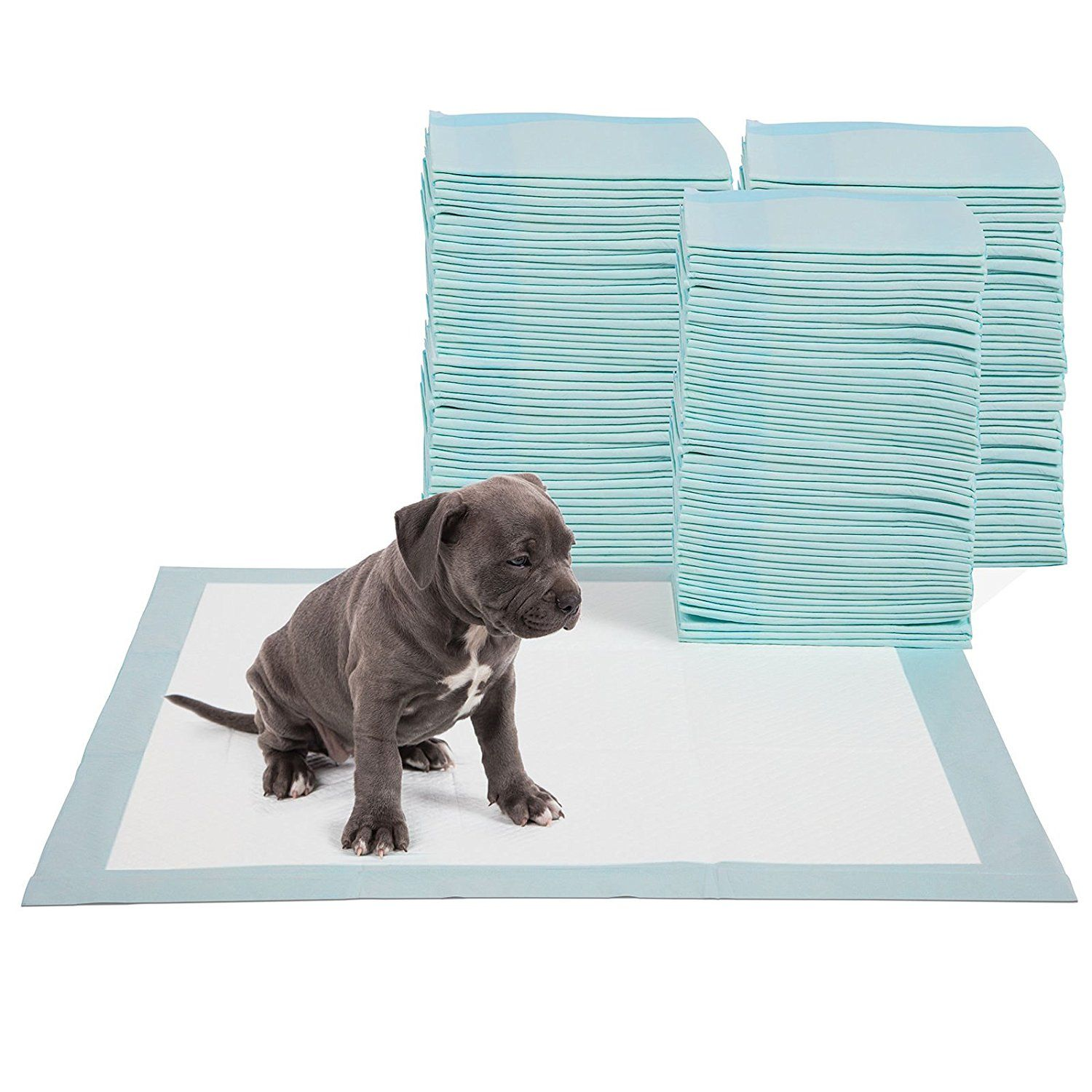 Paws And Pals Puppy Training Potty Pads For Pets Dogs And Cats