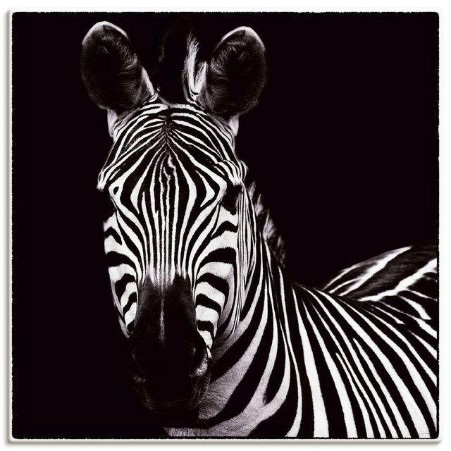 Photo of Kunstdruck Poster »Debra Van Swearingen: Zebra II«