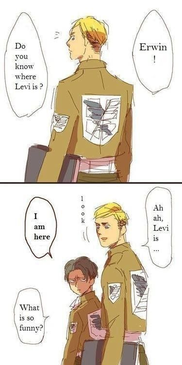 Erwin Smith and Rivaille (Levi) HAHAHA I shouldn't be laughing I'm short too