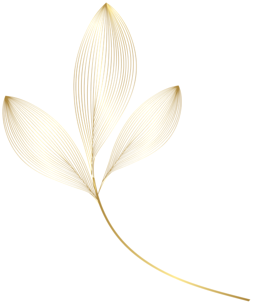 Gold Leaves Png Clipart Flower Art Drawing Flower Background Wallpaper Cherry Blossom Art