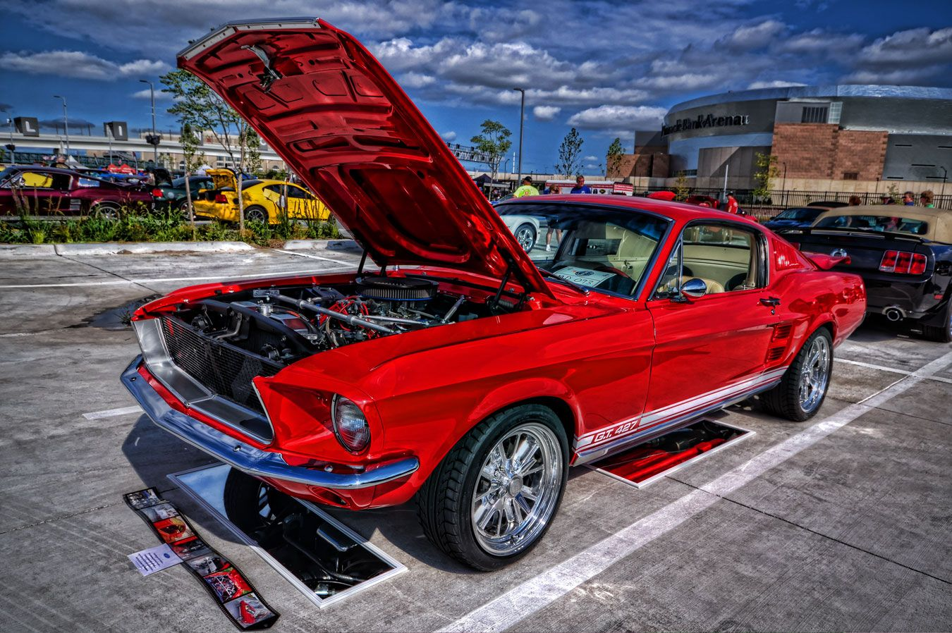 427 mustang auto photo art bmw mustang vehicles