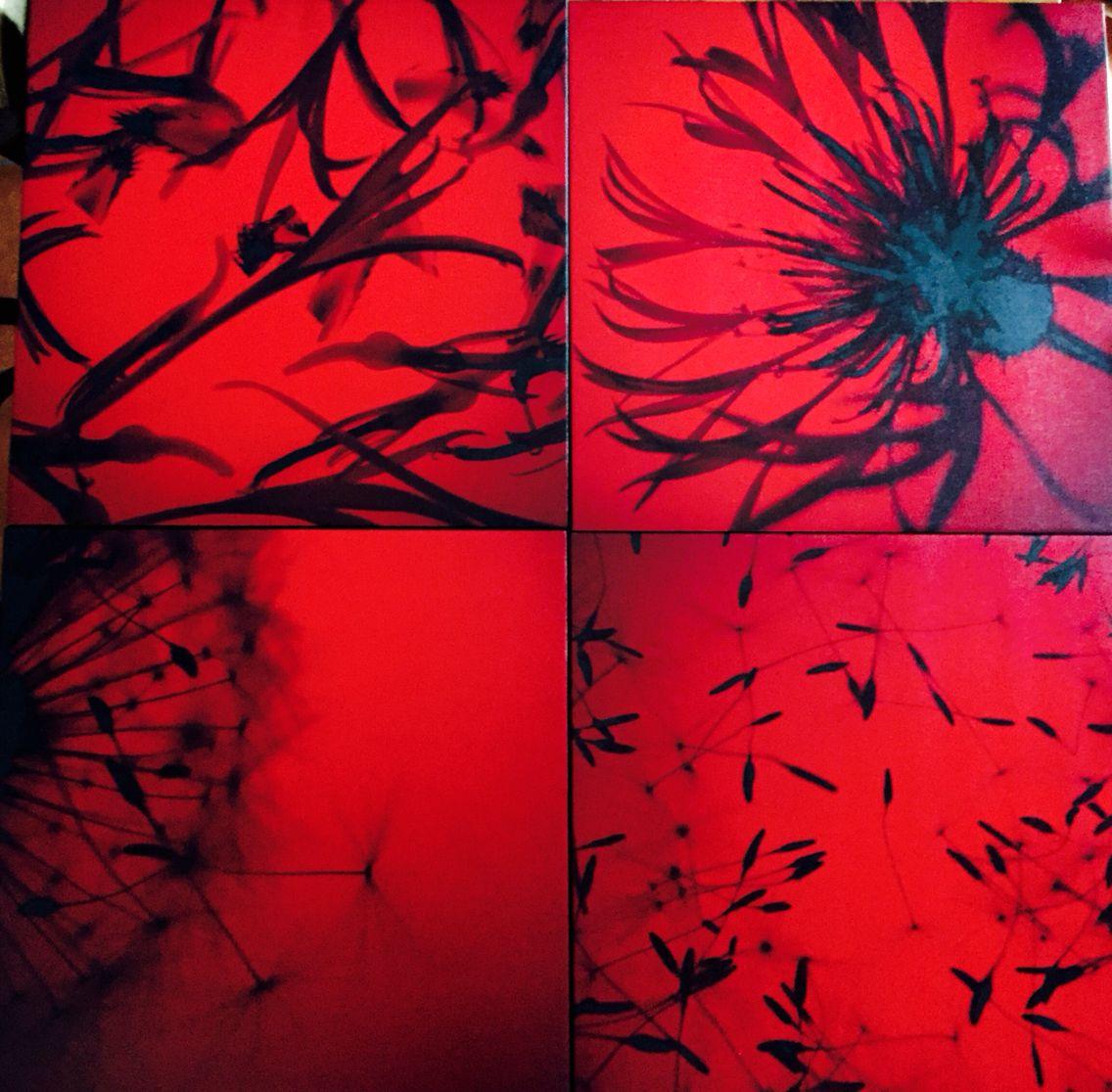 Four  red photos