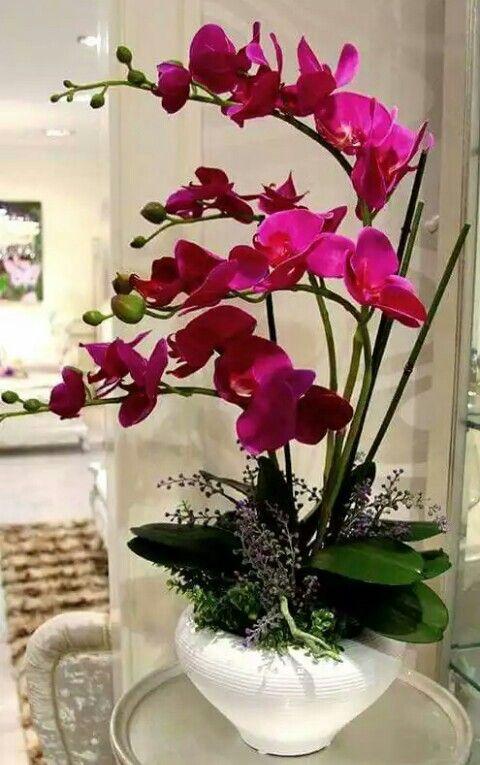 Beautiful Orchids Orchid Flower Arrangements Orchid Arrangements Artificial Flower Arrangements