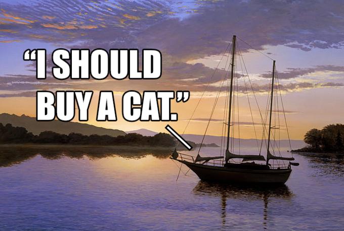 2ee777e47523b2723de5afeaee3331f0 i should buy a boat cat boating, image macro and meme