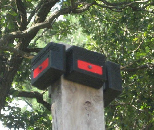 Original Automatic Predator Control Nite Guard Solar
