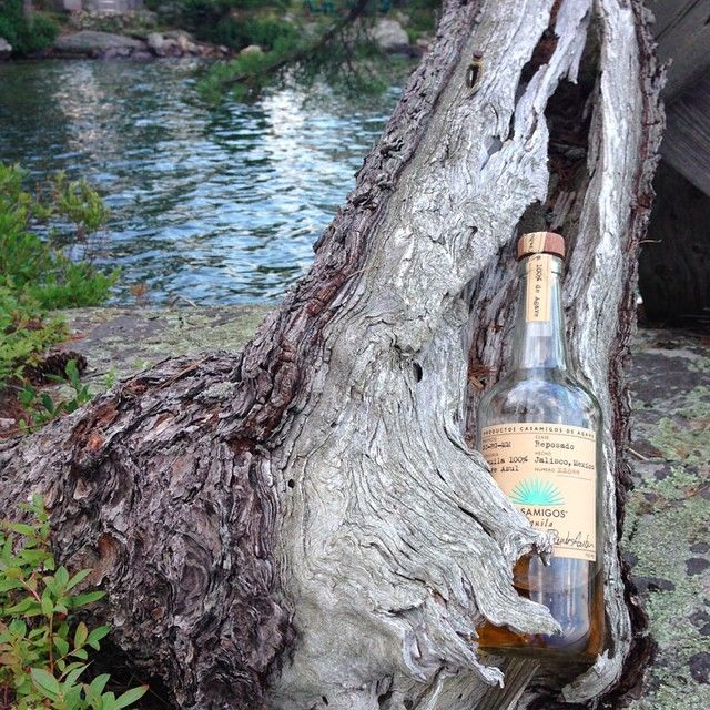 Bottle Service Casamigos Tequila in nature. Can't let got.