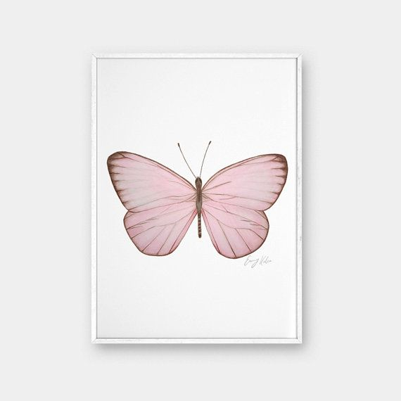 Butterfly Wall Art Drawing