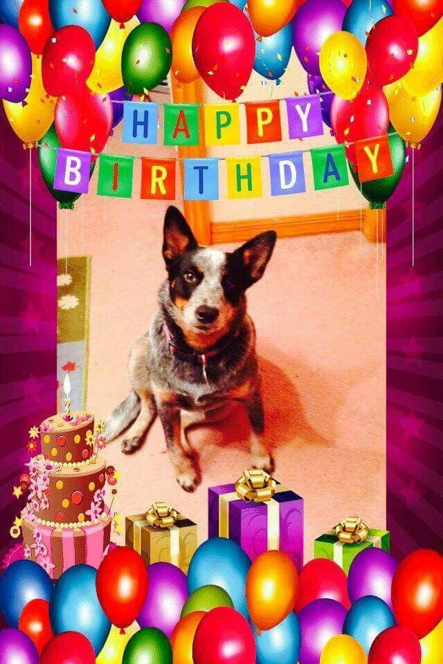 Happy Birthday With Images Happy Birthday Birthday Happy