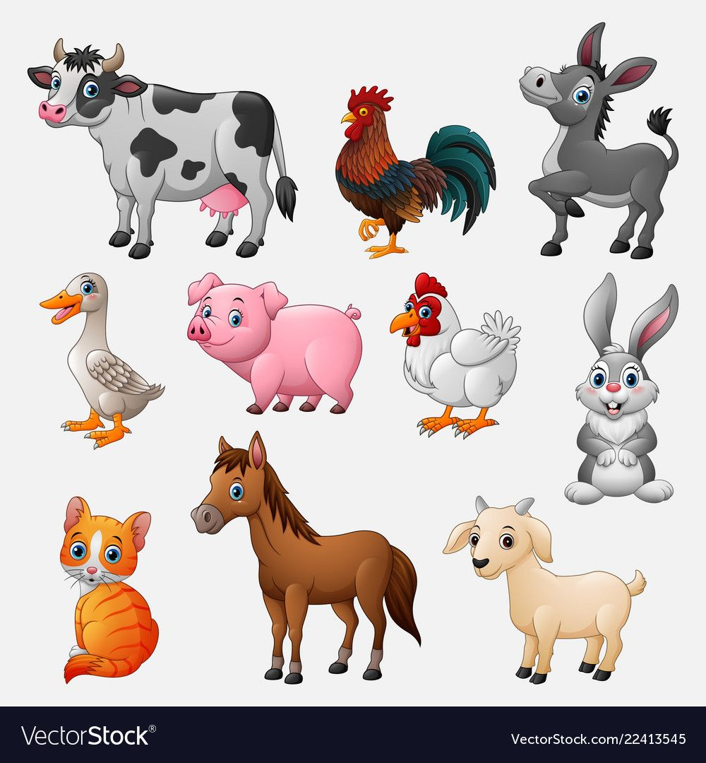 Farm animal collection set on white background vector