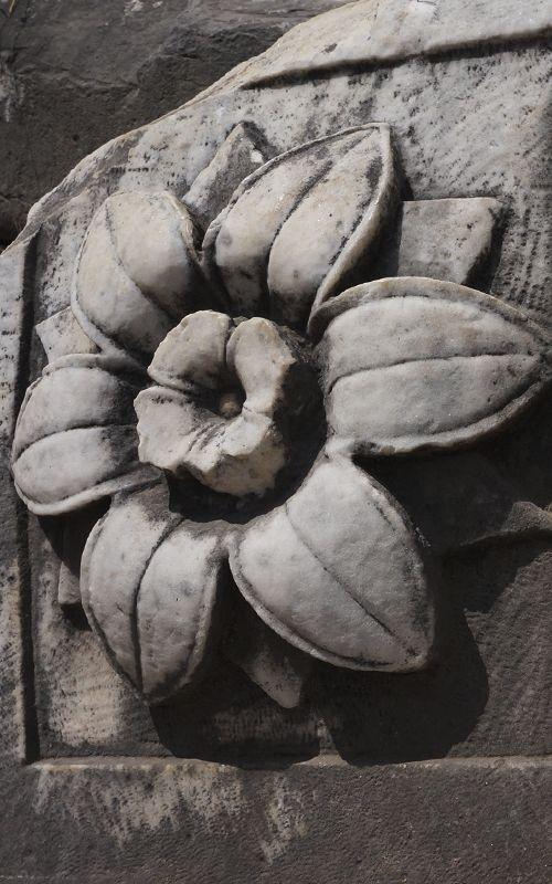 Travel tips for Rome! Consejos de viaje para Roma! www.espressofiorentino.com #roma #rome #travel #viaje #viajar #espressofiorentino #traveler #viajero #coffee #traveltips #tips #italia #italy #art #arte #escultura #flor #flores #flower #flowers