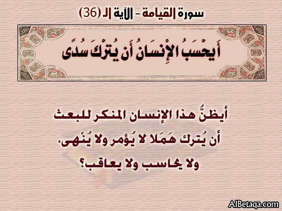 الآيه 36 سورة القيامة التفسير المصور Calligraphy Social Security Card Arabic Calligraphy