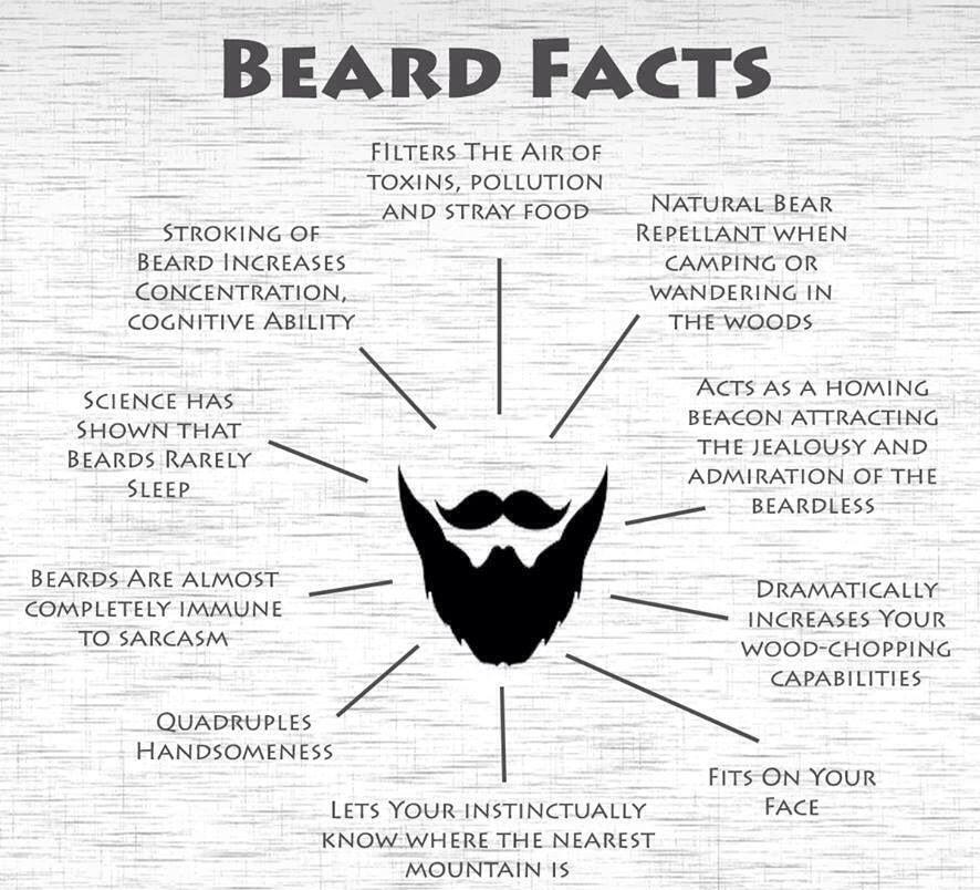 Beard Facts   Men: Love & Laugh   Pinterest