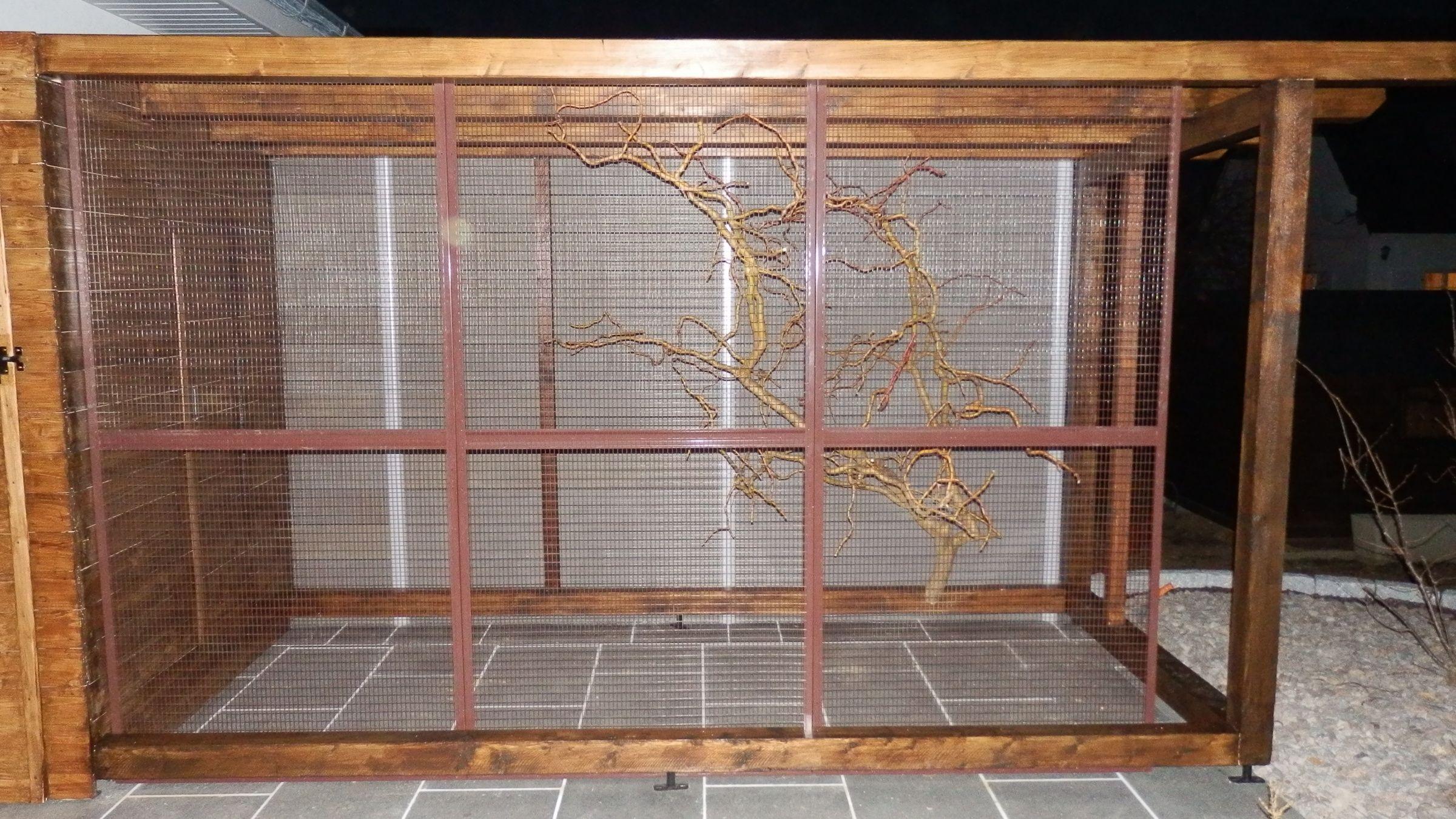 construction d 39 une voli re ext rieur pour nos kakariki et erythropt re pinterest voliere. Black Bedroom Furniture Sets. Home Design Ideas