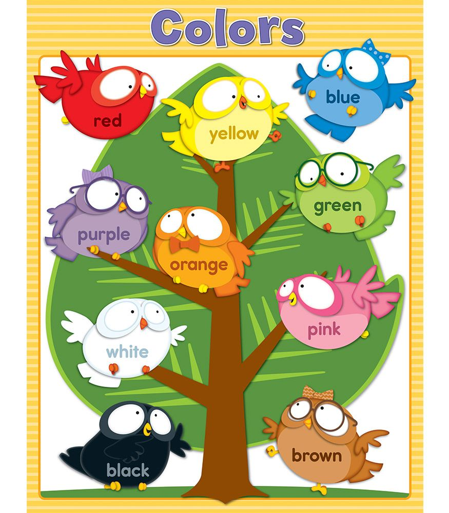 Owl Pals Colors Chart | Colour chart, Chart and Owl
