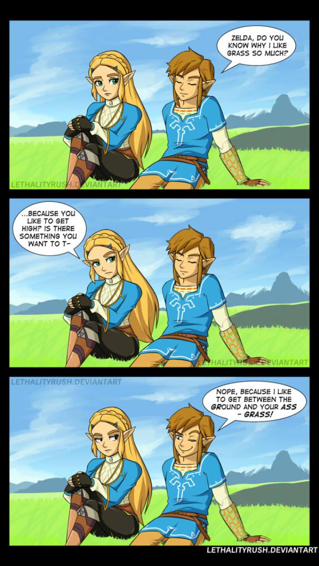 Pin By Pugmaster On Zelda Legend Of Zelda Memes The
