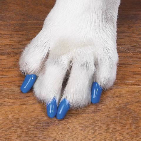 Covers For Pet Nails Protect Wood Floors Dog Nails Soft Claws