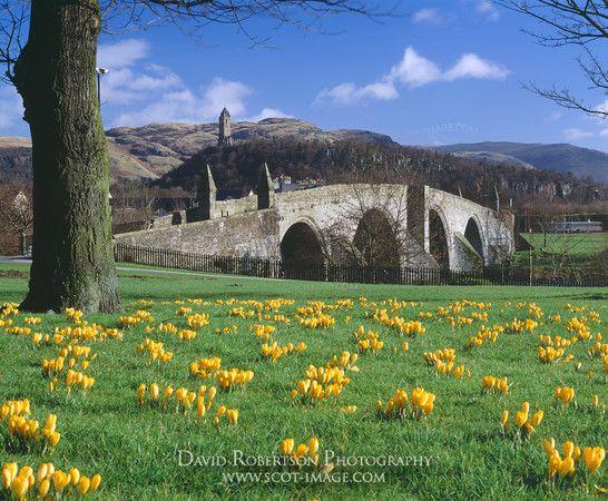 Stirling-Auld-Brig-Scotland-FB-0224