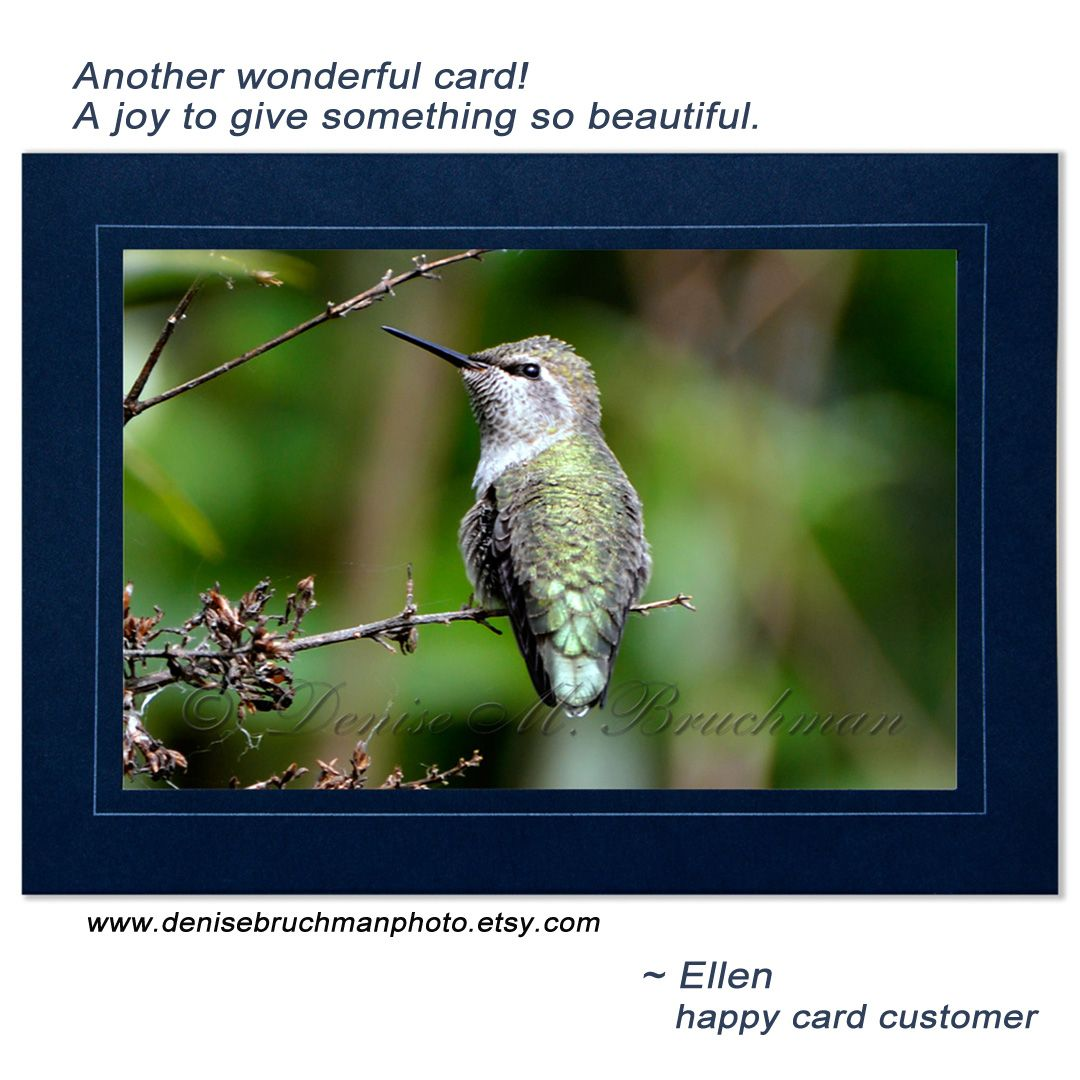 Another happy customer review thank you i offer these pretty and hummingbird m4hsunfo