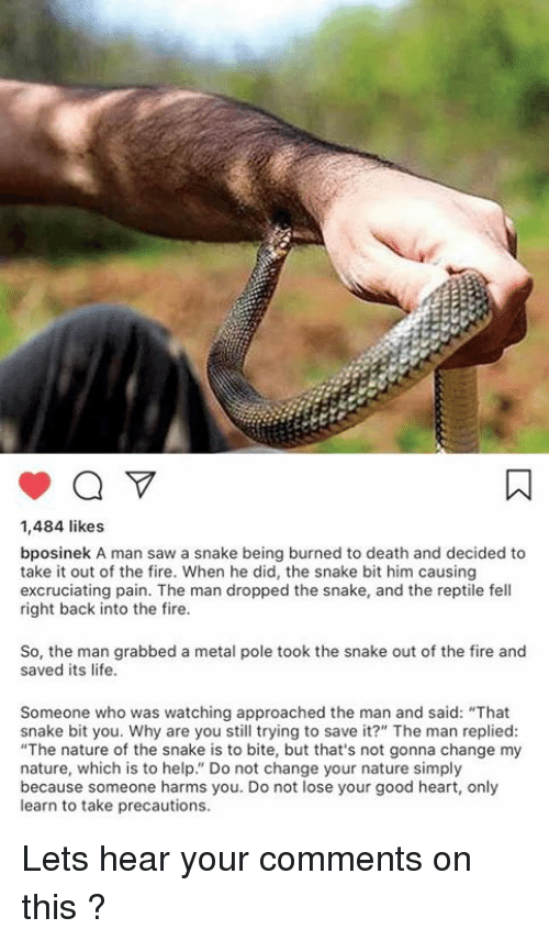How To Get A Snake To Release Its Grip