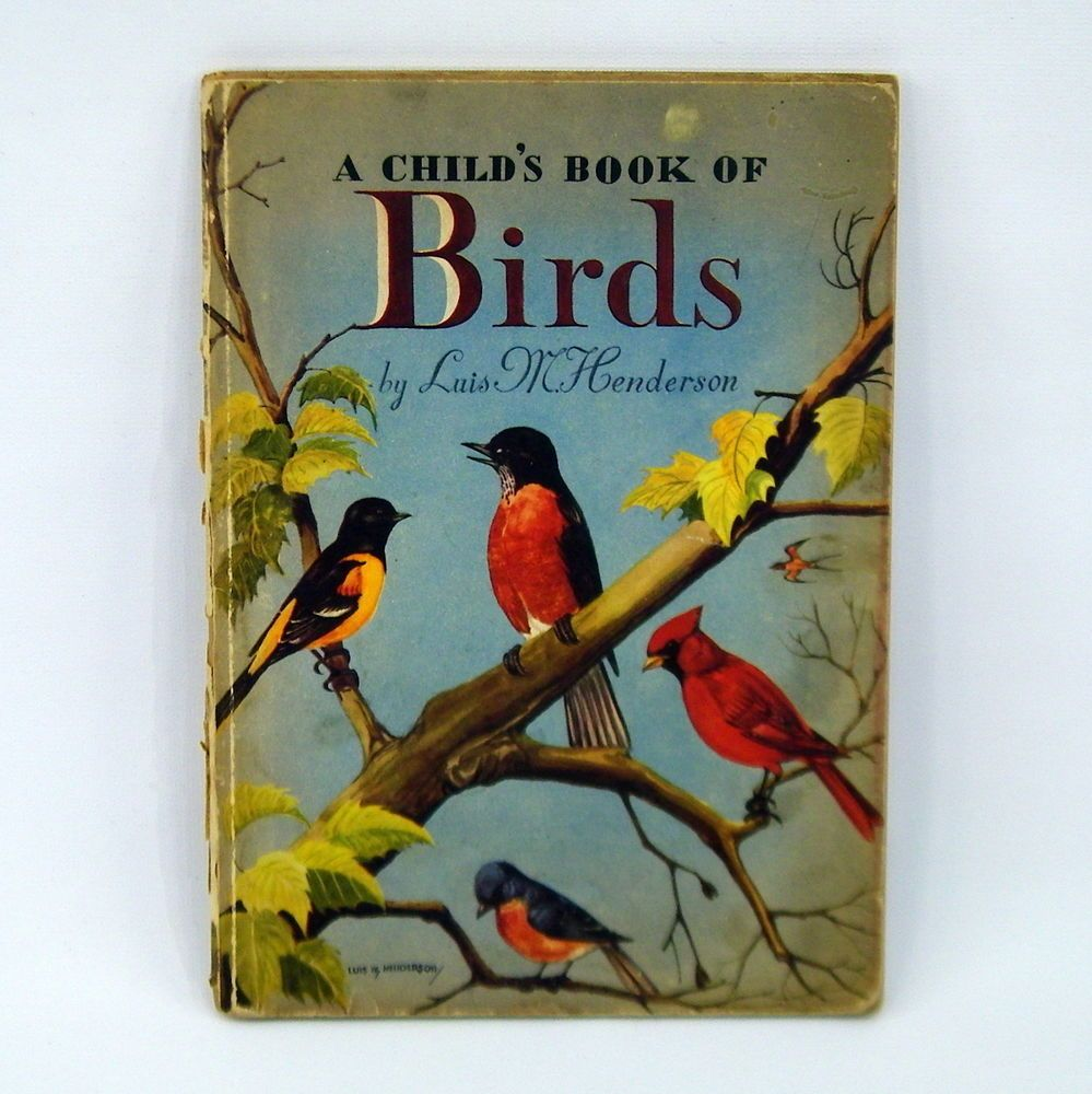 a child u0027s book of birds by luis m henderson books pinterest
