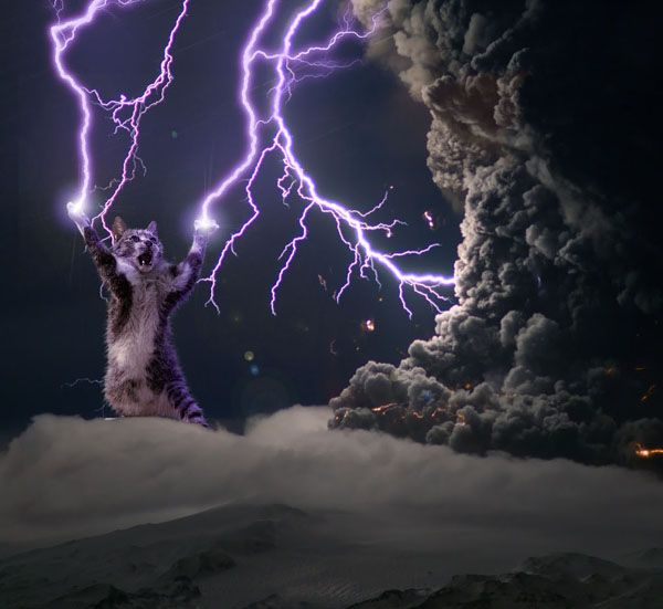 Electrikitty