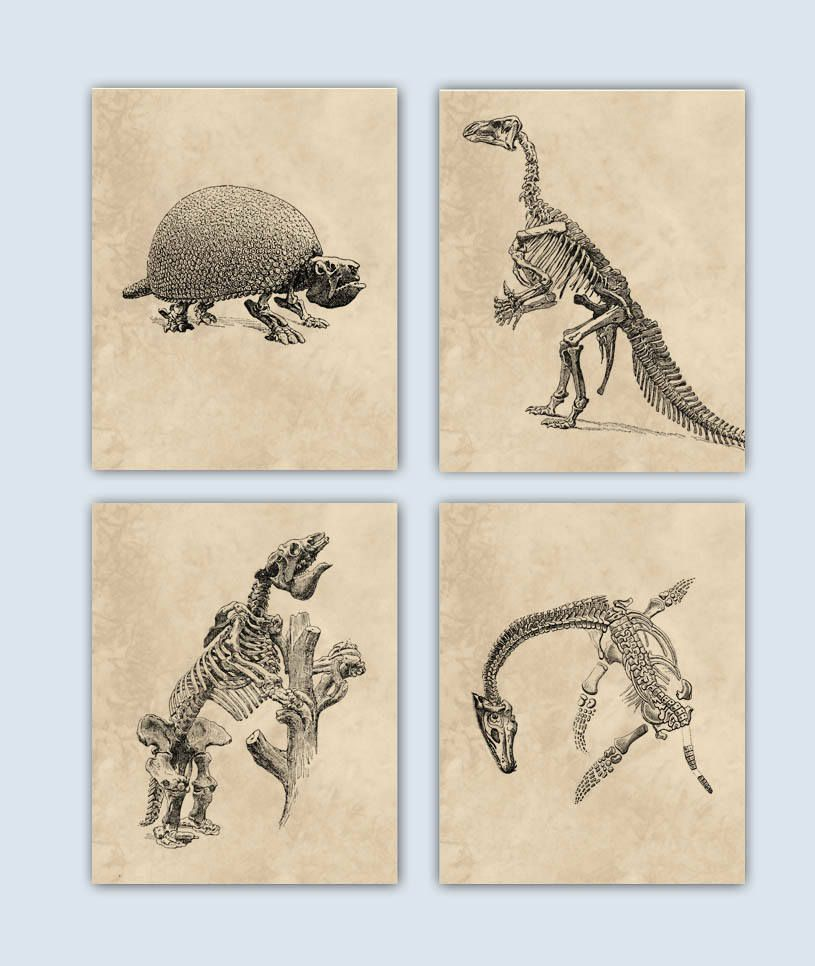 basics s darice kid dinosaur for supplies room art diy dino tutorial decor wall