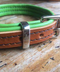 collier pour chien gamm vert