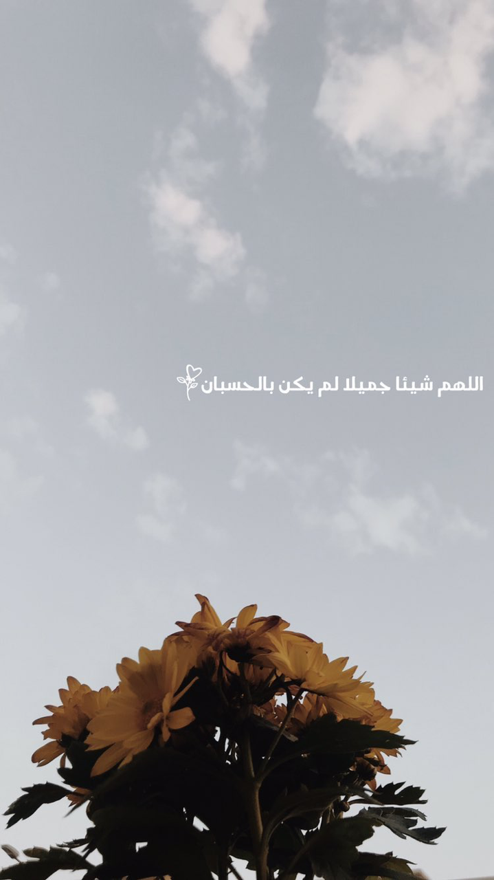 خلفيات سنابات Beautiful Arabic Words Iphone Wallpaper Quotes Love Photo Quotes